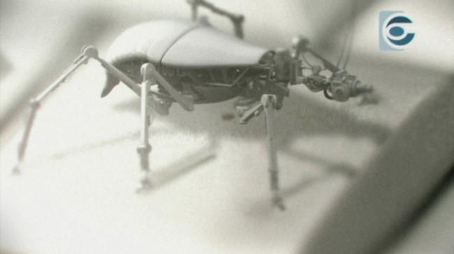 Bots Conspiracy Insekt